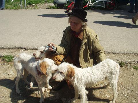 Merlin, Mambo, Moreska & me